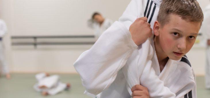 Horner Judoka weiter Landesspitze
