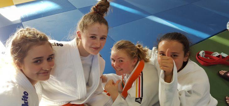 Horner Judoka beenden Trainingspause