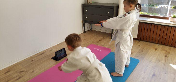 Online -Training der Judoabteilung